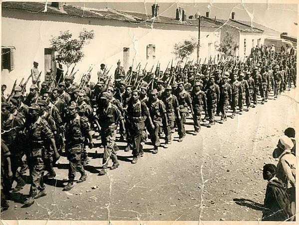 Insigne Harka Bellounis - Armée nationale du peuple Algérien Beloun10