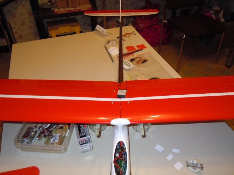 le CIRRUS F5J   sorti de la boite Dscn0136