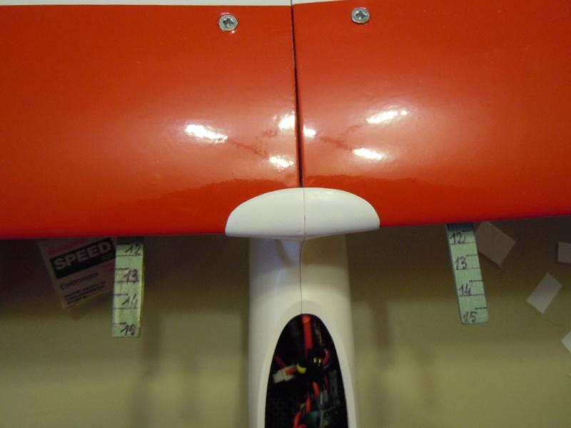 le CIRRUS F5J   sorti de la boite Dscn0137