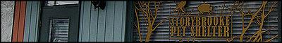Protectora de animales/Veterinario de Storybrooke