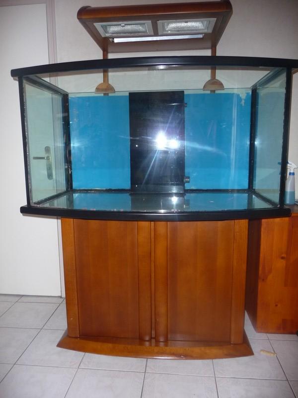 Aquarium atelier de marianne beluga 550 litres P1050611