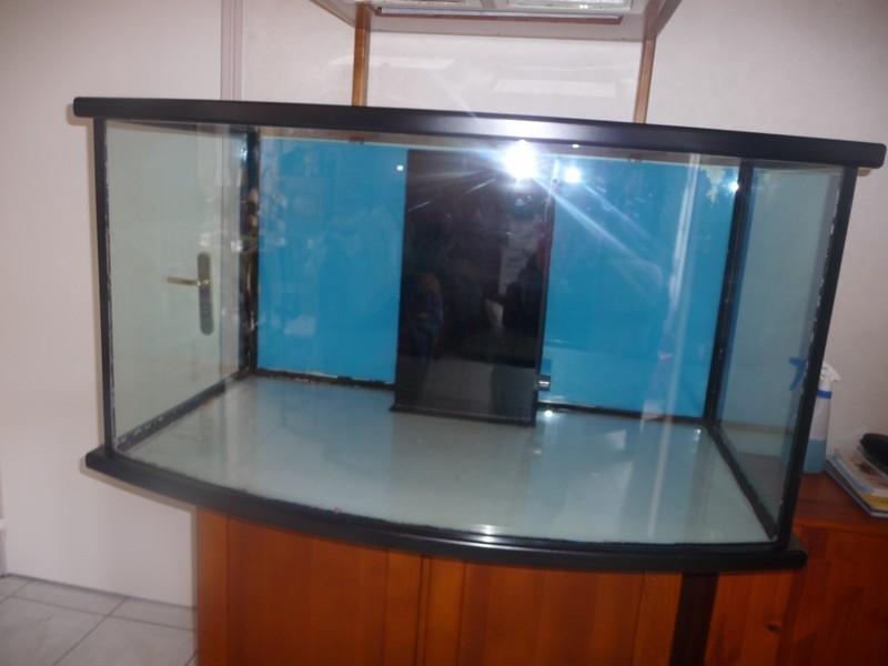 Aquarium atelier de marianne beluga 550 litres P1050612