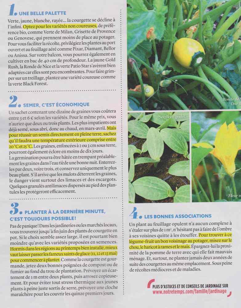 au jardin - Page 3 10111