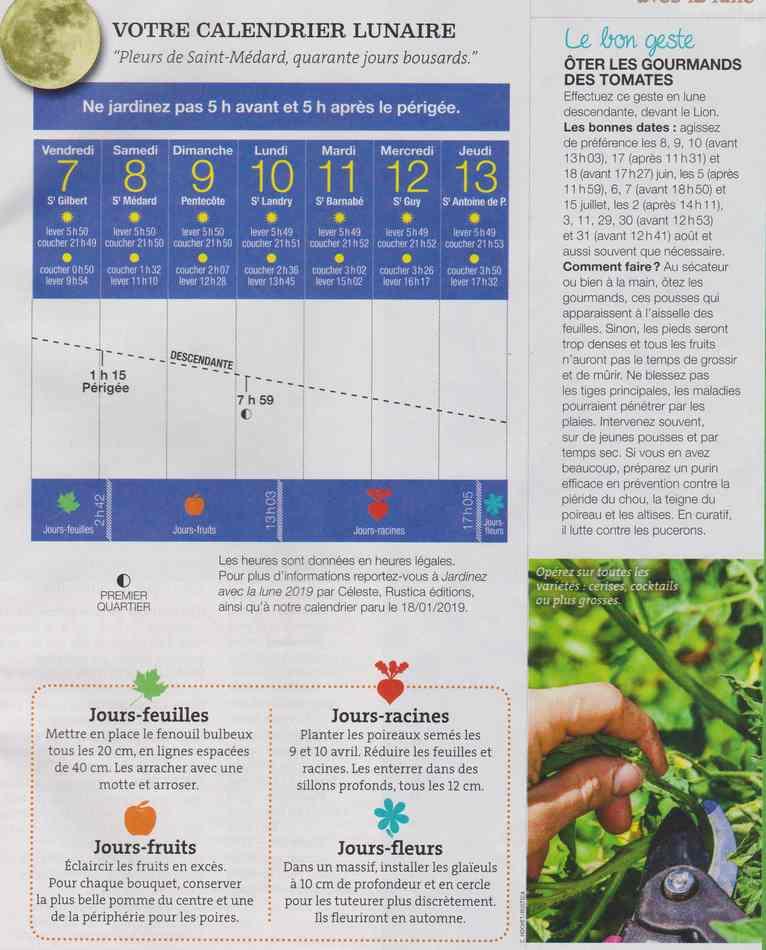 votre calendrier lunaire de la semaine - Page 4 1018