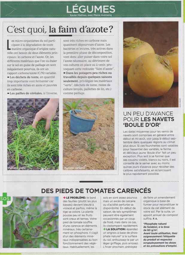 au jardin - Page 7 1021