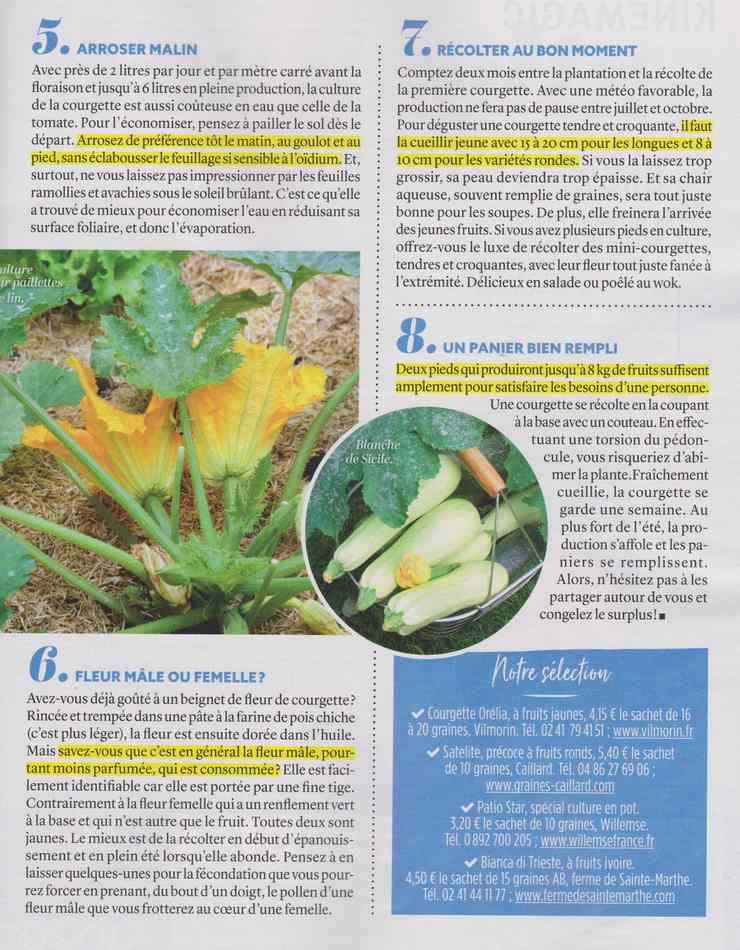 au jardin - Page 3 10211