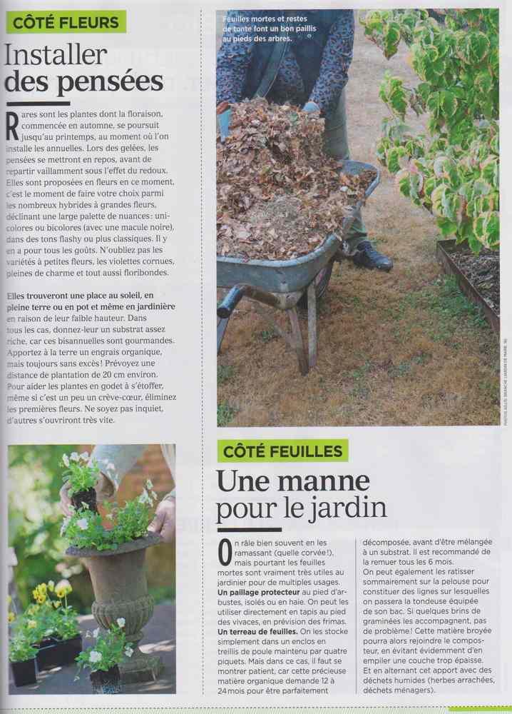 au jardin - Page 10 1028