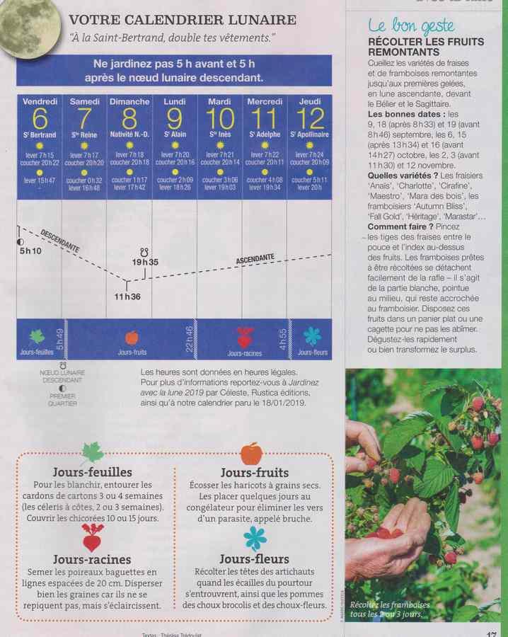 au jardin - Page 11 1031