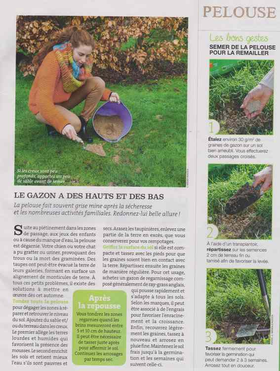 au jardin - Page 16 1034