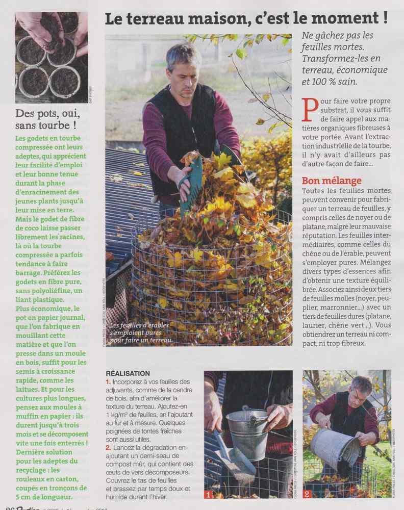 au jardin - Page 17 1108
