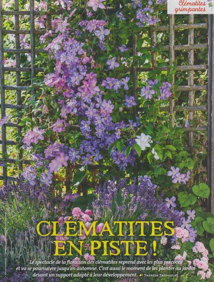 au jardin - Page 2 1111