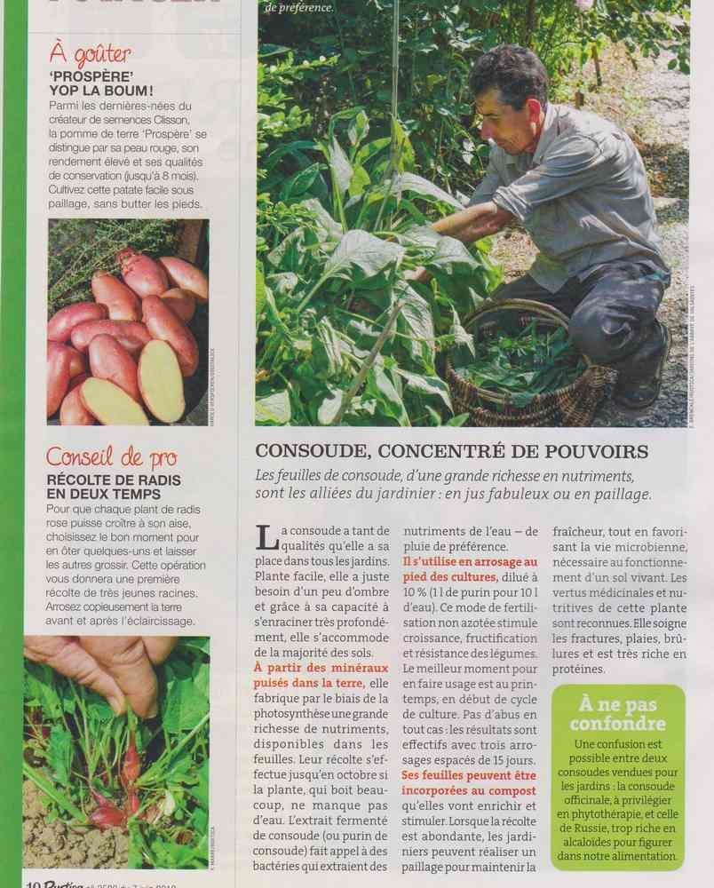 au jardin - Page 6 1118