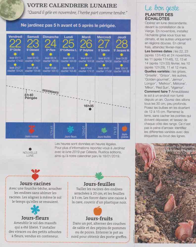 votre calendrier lunaire de la semaine - Page 5 1136