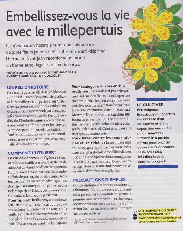 les plantes qui soignent - Page 9 1137