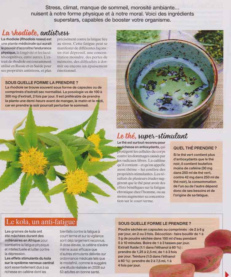 les plantes qui soignent - Page 9 1161