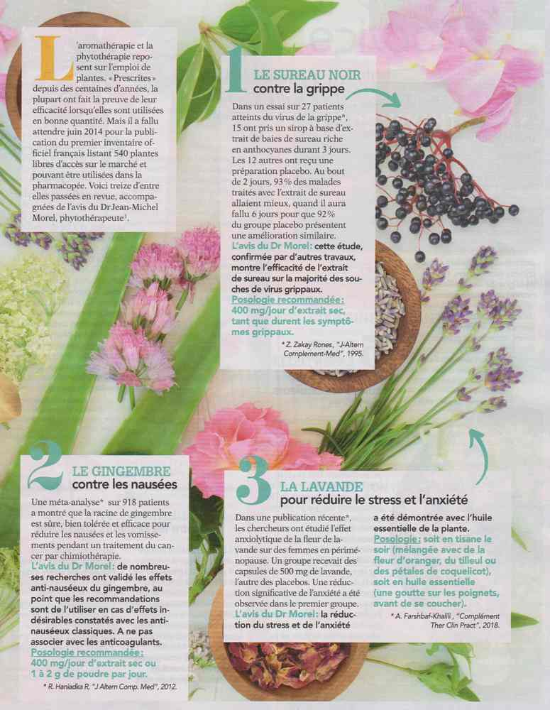 les plantes qui soignent - Page 4 117