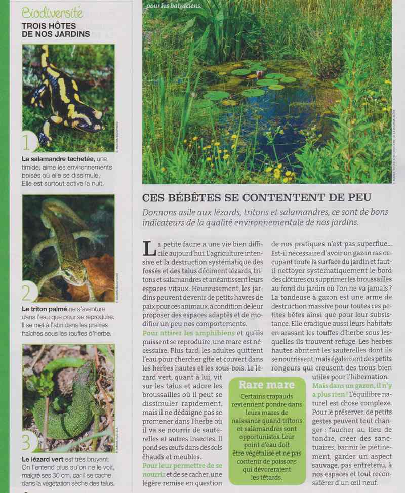 au jardin - Page 2 119