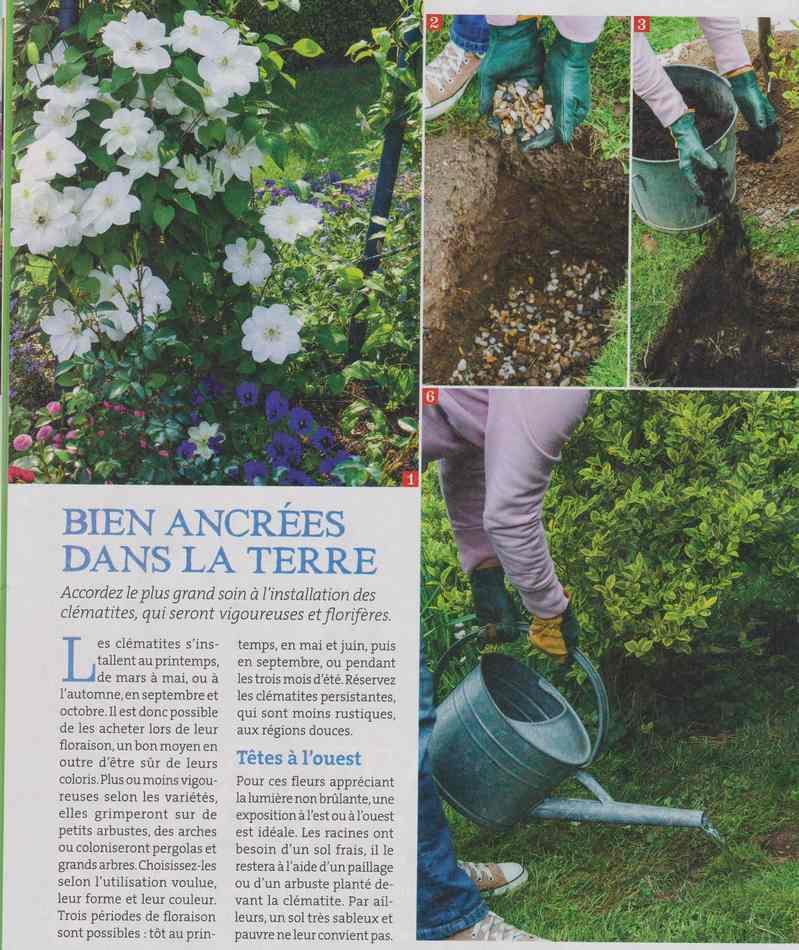 au jardin - Page 2 1213