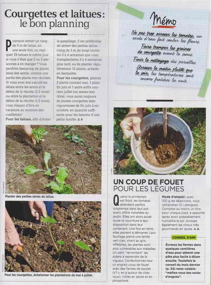 au jardin - Page 3 1214