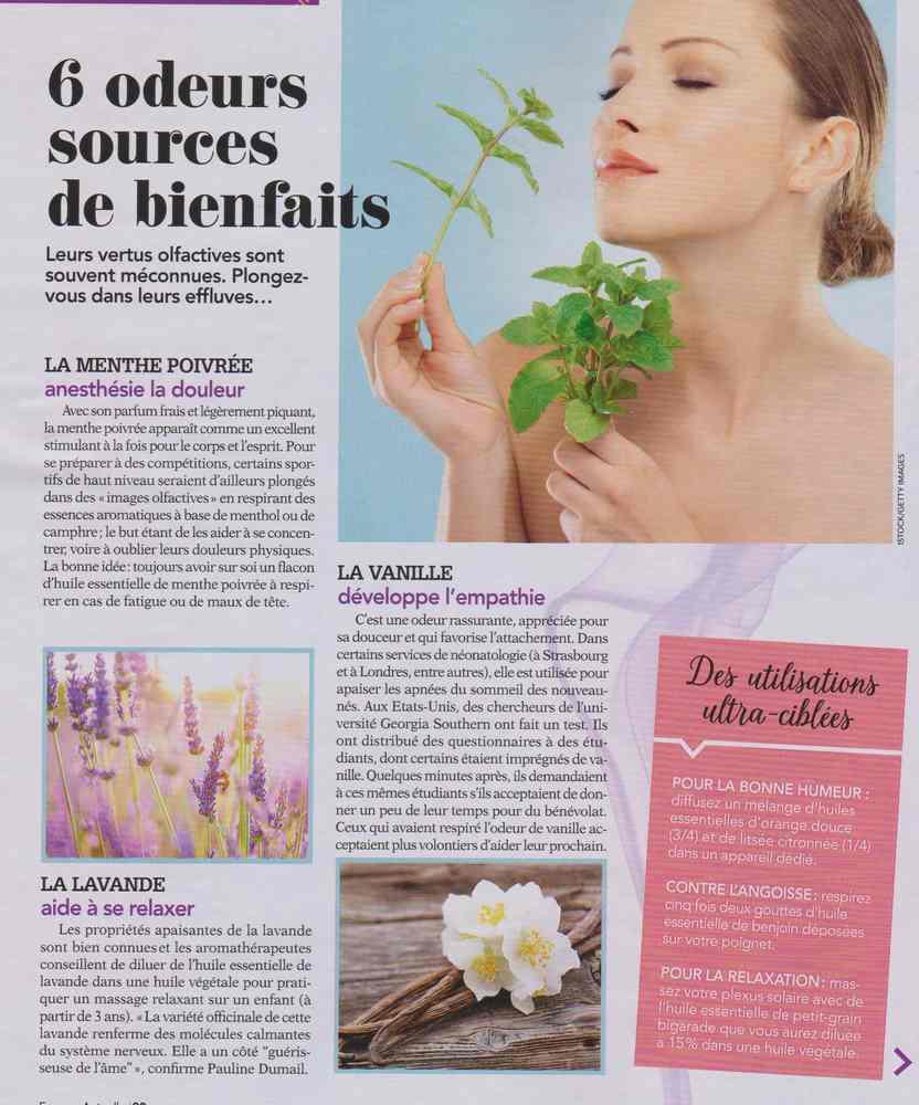 les plantes qui soignent - Page 5 1216