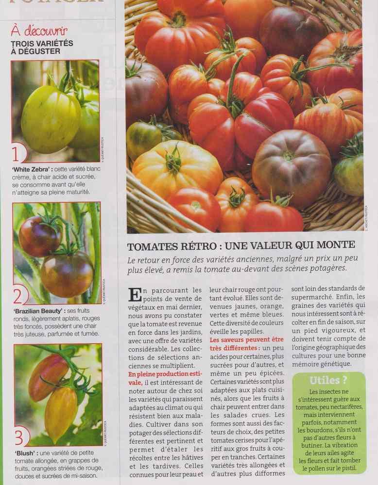 au jardin - Page 9 1223