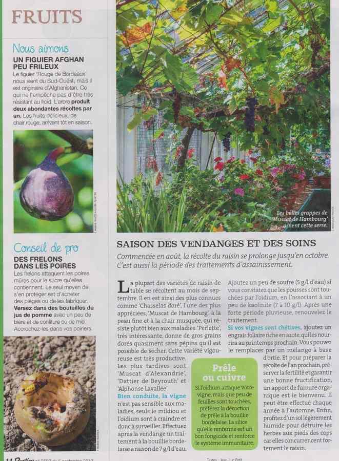 au jardin - Page 11 1225