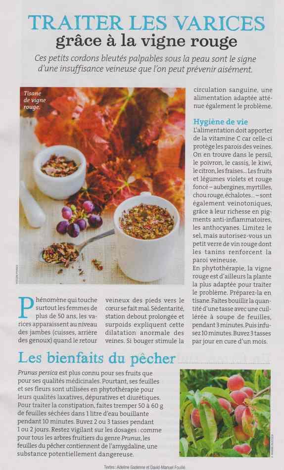 les plantes qui soignent - Page 4 125