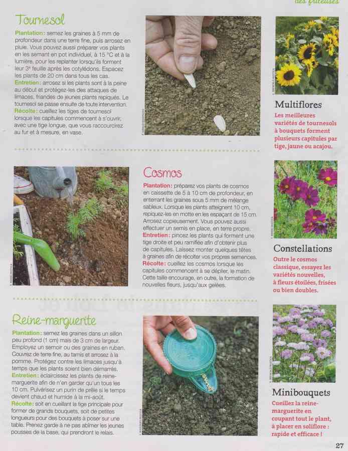 au jardin - Page 34 1252