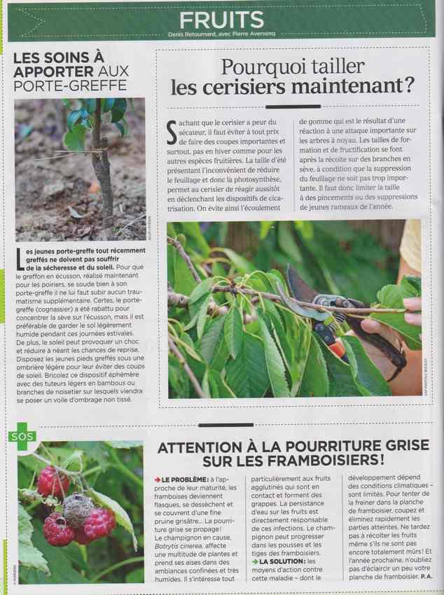 au jardin - Page 7 1317