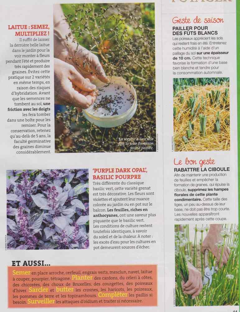 au jardin - Page 9 1320