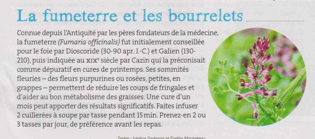 les plantes qui soignent - Page 8 1321