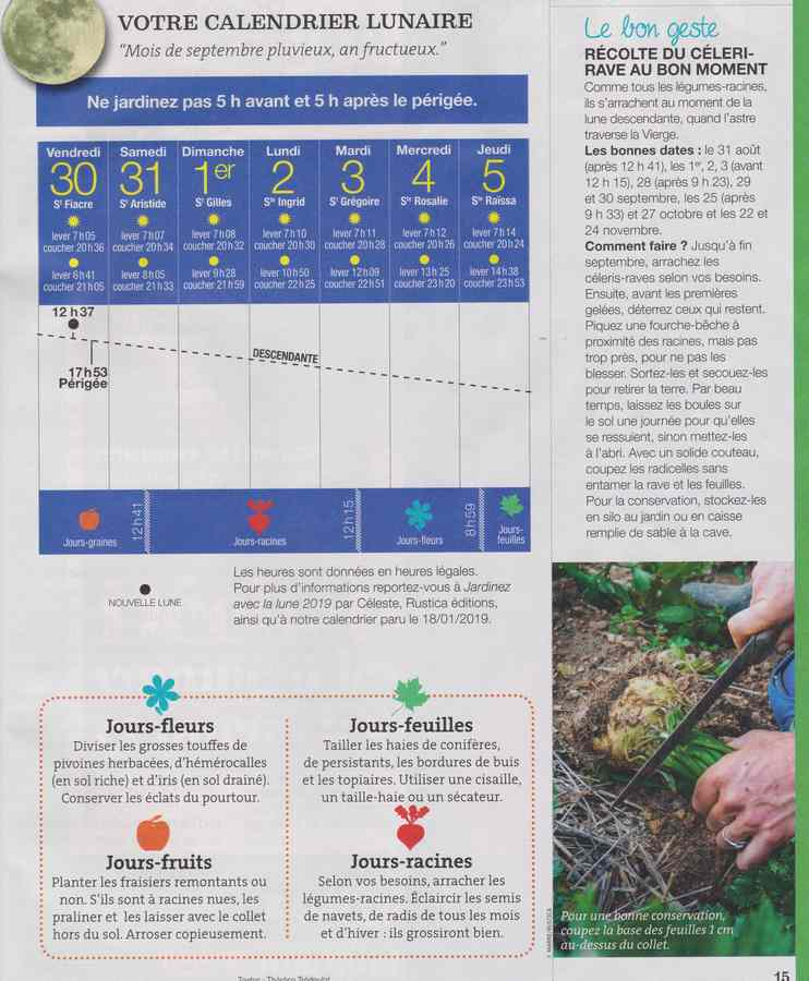 au jardin - Page 11 1323