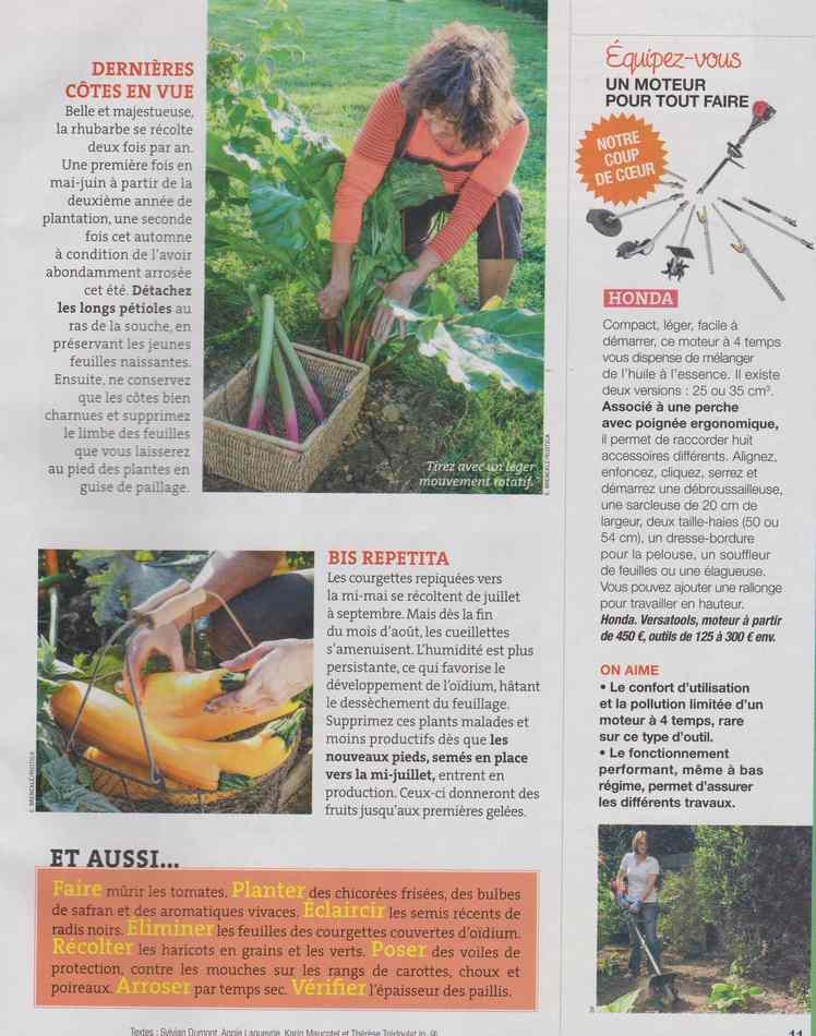 au jardin - Page 16 1327