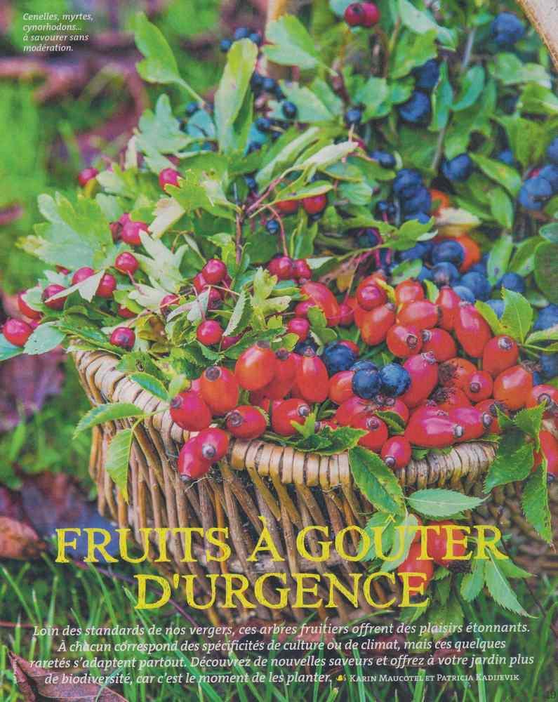au jardin - Page 18 1329