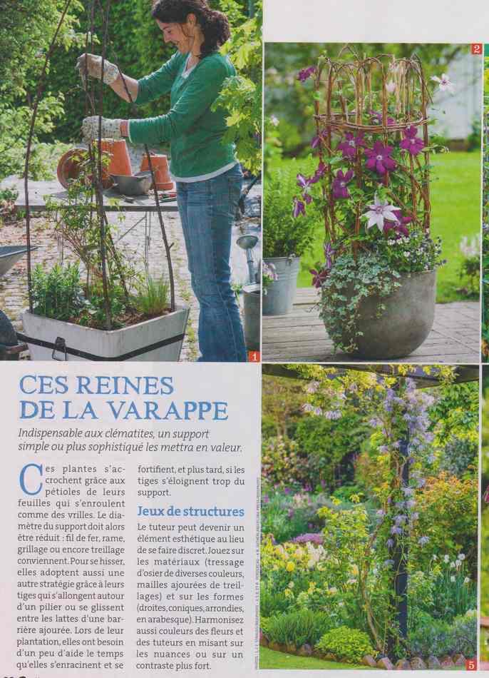 au jardin - Page 2 1411