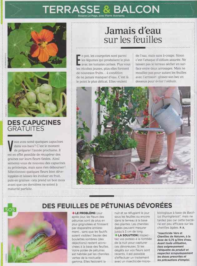 au jardin - Page 7 1414