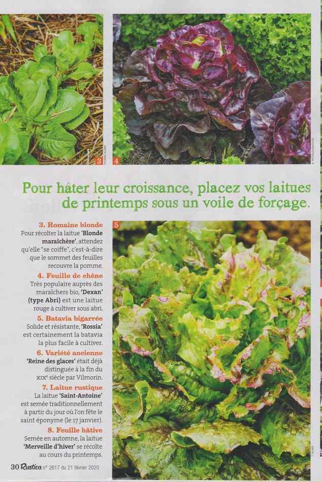 au jardin - Page 28 1431