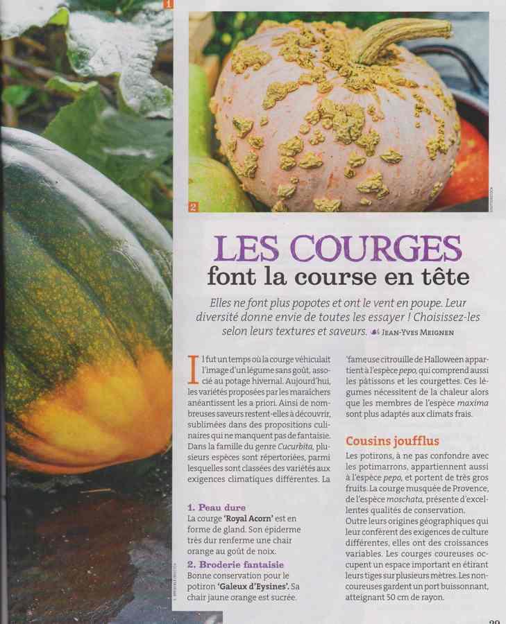 au jardin - Page 34 1539