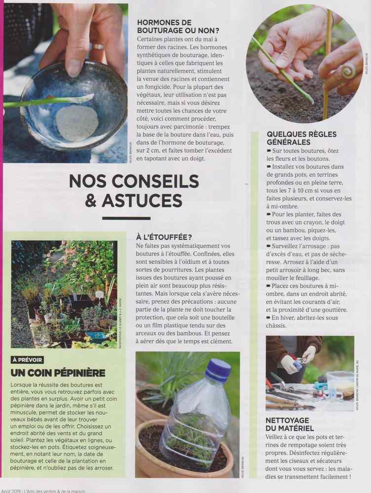 au jardin - Page 9 1613