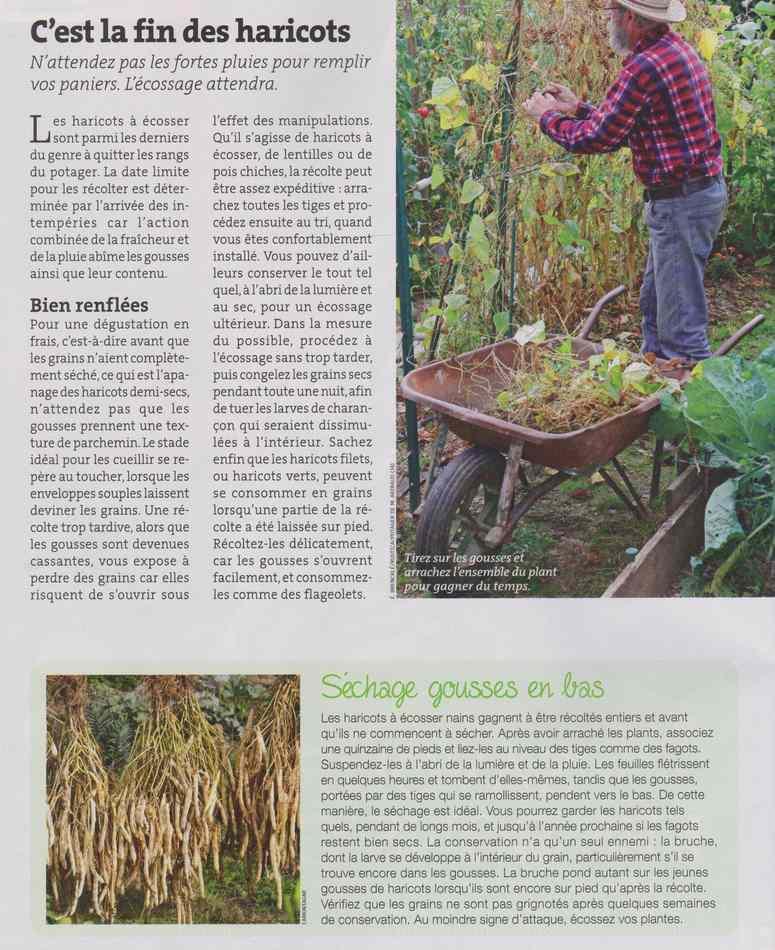 au jardin - Page 12 1616