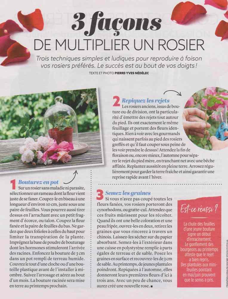 au jardin - Page 9 169