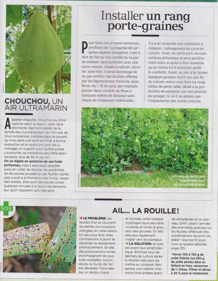 au jardin - Page 4 1712