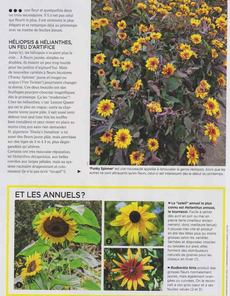 au jardin - Page 10 1714