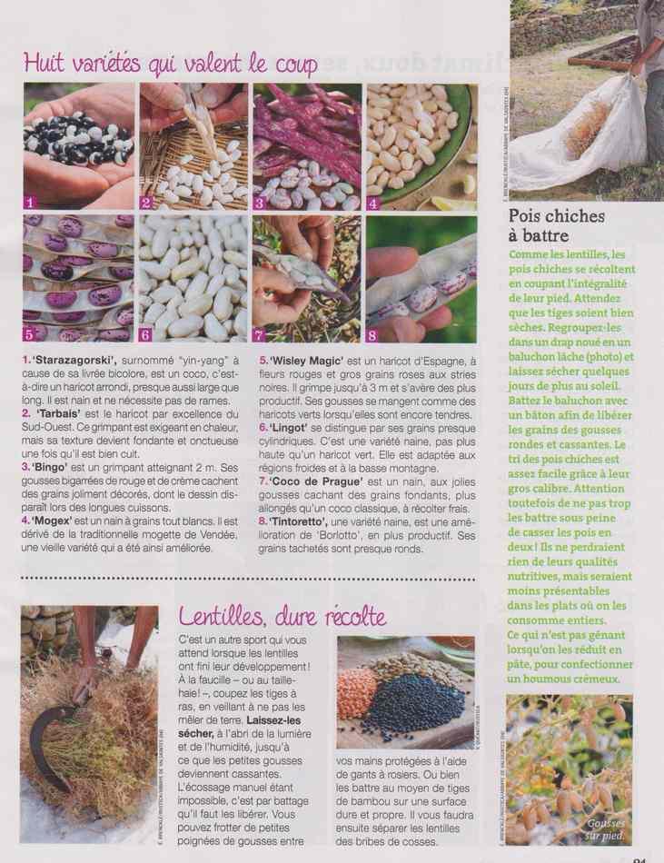 au jardin - Page 12 1715