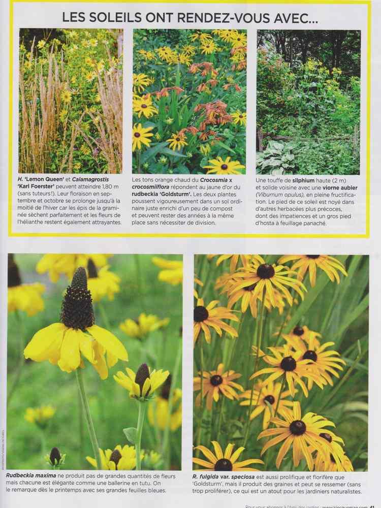 au jardin - Page 10 1816