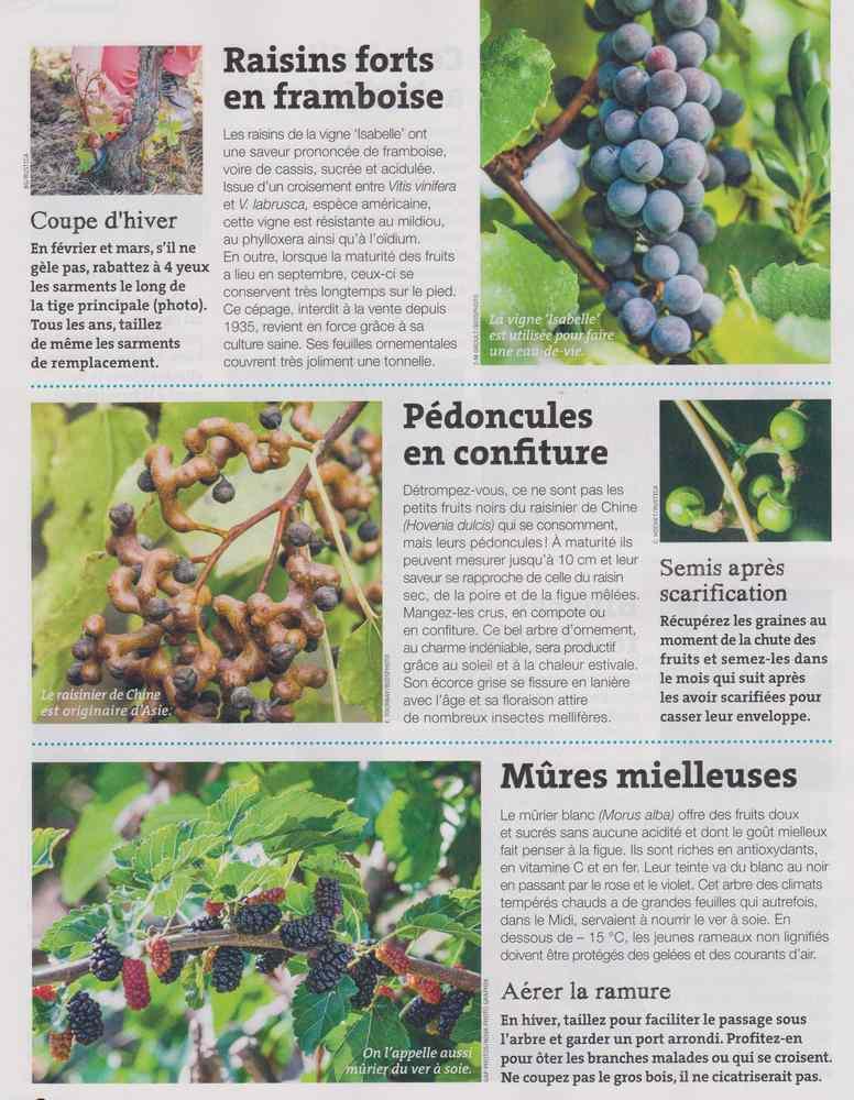 au jardin - Page 18 1824