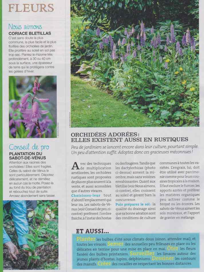 au jardin - Page 4 2010