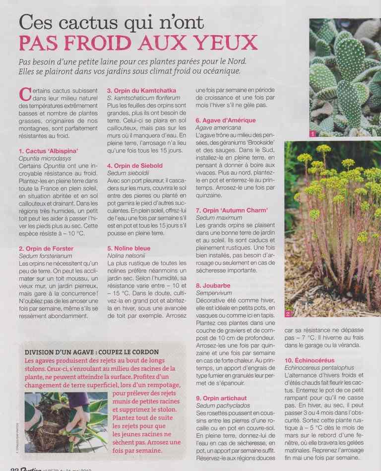 au jardin - Page 5 2011
