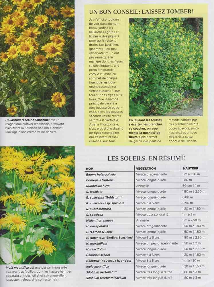 au jardin - Page 10 2012