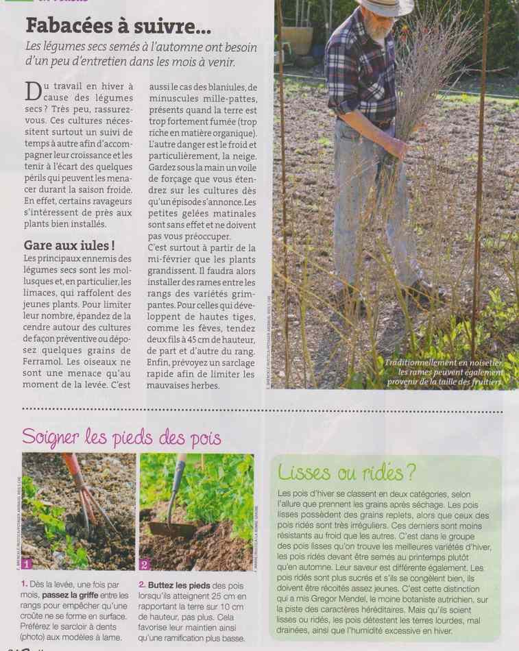 au jardin - Page 12 2013